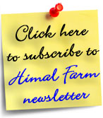 Subscribe to Himal Farm newsletter!
