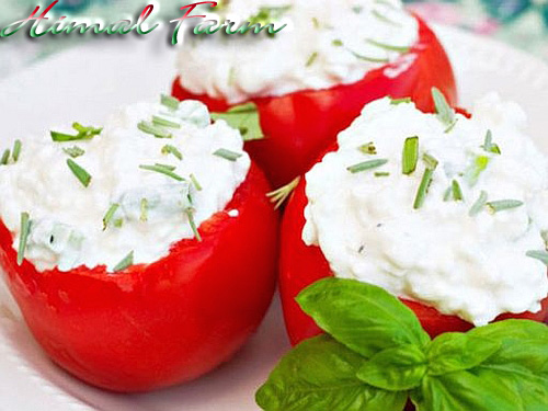 Tomatoes stuffed with Ricotta and aromatic herbs